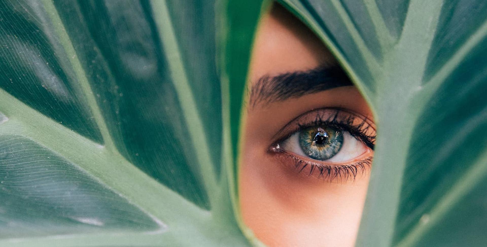 Полное руководство по SEO для индустрии здоровья и красоты